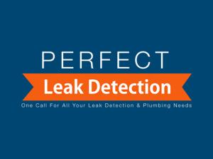 Perfect Leak Detection