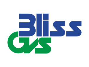 Bliss GVS Pharma Ltd.