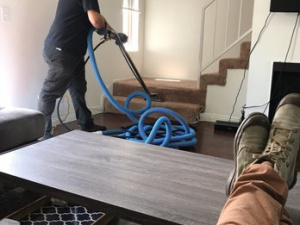 Green Carpet Cleaning Orange County