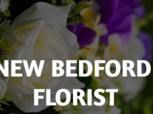 New Bedford Florist