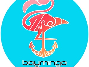 Baymingo - Boat rental services