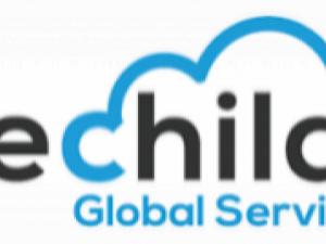 Techila Global Services